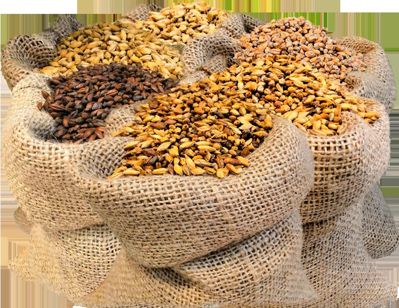 Солод ячменный, пшеничный, карамельный, специальный в Украине