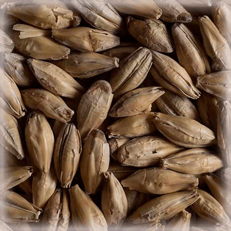 Бельгийский специальный солод типа Münich CHÂTEAU MUNICH