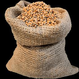 купить солод пшеничный